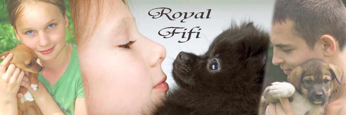 Rotal Fifi 3